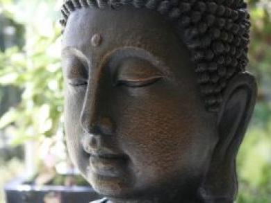 thumb_asso-yoga